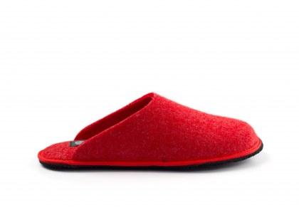 Holi Red